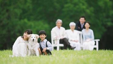 マレリークではあなたが遺族になった時、向き合うことになる必要な手続きや届出について、様々な情報をご提供していきます。